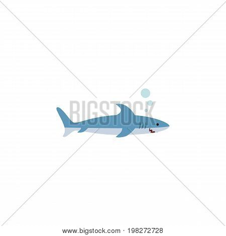 Shark Vector Element Can Be Used For Shark, Gray, Fish Design Concept.  Isolated Gray Fish Flat Icon.