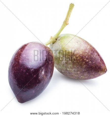 Half-ripe (semi-ripe) fresh olives with leaves on the white background.