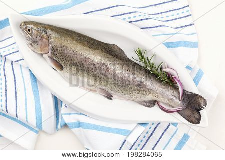 Raw river trout fish on white plate on kitchen cloth white table from above. Healthy fish eating seafood.