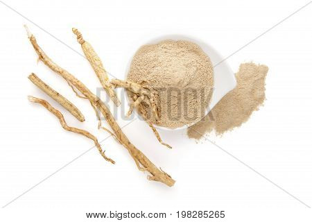 Healthy ginseng powder and ginseng root isolated on white background top view. Natural remedy adaptogen medical plant.
