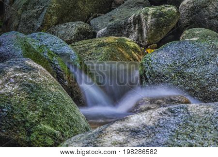 forest, stream, river, flowing, waterfall, water, mountain, flow, nature, green, stone, rock, beautiful, wet, outdoor, wild, cascade, park, moss, scenery, tree, natural, landscape, environment, environmental, motion, season, fresh, blur, The small waterfa