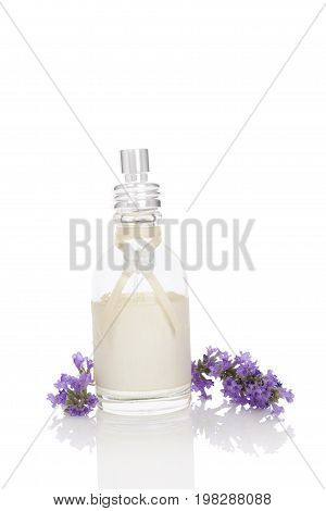Lavender background. Fresh lavender blossom and lavender soap isolated on white background. Natural lavender cosmetics.