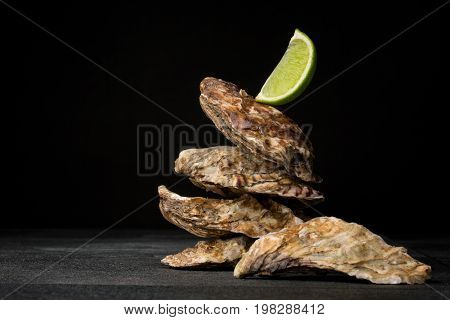 A close-up of four salty oysters on a black table background. Fresh sea mollusks and a piece of green lime. Expensive and tasty ingredients for gourmets. Traditional restaurant appetizer. Copy space.