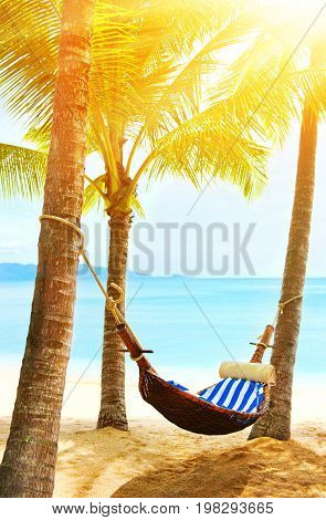 Beautiful beach. Hammock between two palm trees on the beach. Holiday and vacation concept. Tropical beach. Beautiful tropical island.