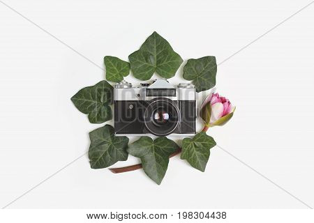 Travel Concept - Floral Frame Made Of Green Ivy Leaves, Nymphaea Waterlily Purple Flowers And Vintag