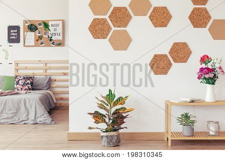Diy Hexagon, Honeycomb Cork Wall