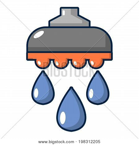Shower head icon. Cartoon illustration of shower head vector icon for web design