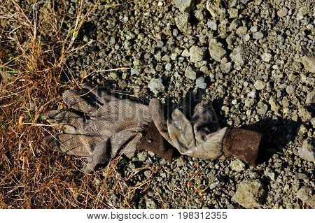 Old pair of discarded gloves sit in the open field of the Crater of Diamonds State Park in Murfreesboro Arkansas.