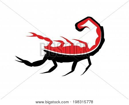 scorpion vector design on a white background