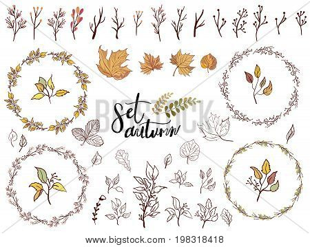 Vector set of autumn leaves round frames. A collection of themed lable with design elements featuring leaves