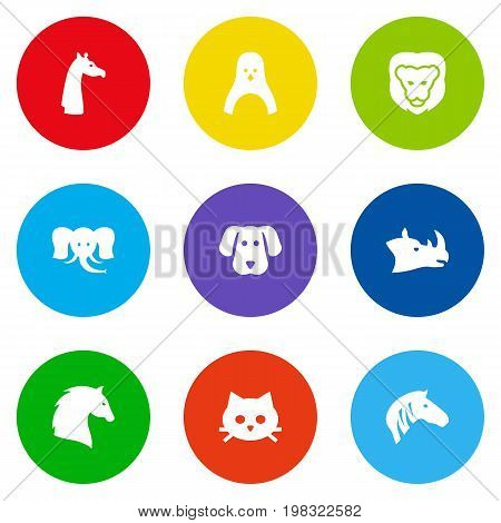 Collection Of Hound, Horse, Pussy And Other Elements.  Set Of 9 Zoology Icons Set.