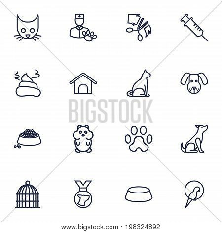 Collection Of Pile Of Poo, Sitting, Grooming And Other Elements.  Set Of 16 Mammal Outline Icons Set.