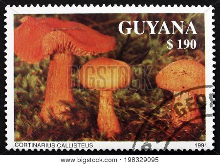 GUYANA - CIRCA 1991: a stamp printed in Guyana shows Cortinarius Callisteus Agaric Mushroom circa 1991