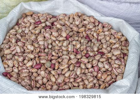 Farmers Market Colorful Beans In Sack