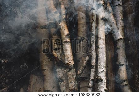 Birch firewood slowly light up and smoke drips through them.