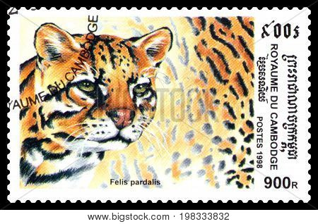 STAVROPOL RUSSIA - August 04 2017 : A Postage Stamp Printed in the Cambodia shows Ocelot (Felis pardalis) series circa 1998