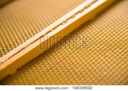 A new foundation in a wooden frame. Procurement for the creation of honeycombs by bees