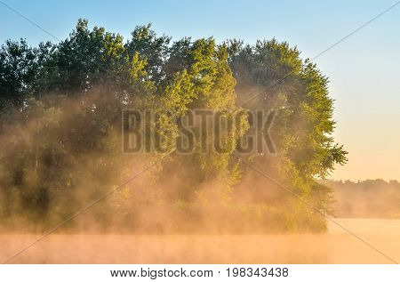 Summer morning landscape. Islet with trees on the lake.