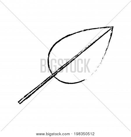 blurred silhouette of ovoid leaf with branch vector illustration