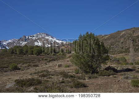Mountainous landscape of Parque Yerba Loca set in a glacial valley close to Santiago, capital of Chile.