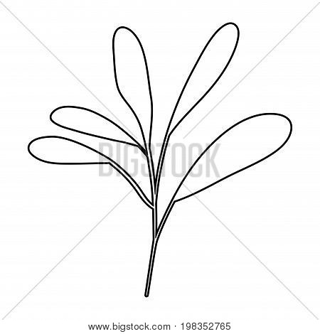 sketch silhouette of branch with leaves oval vector illustration