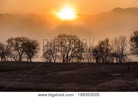 Sunrise Behind Mountain With Tree And Mist On Foreground
