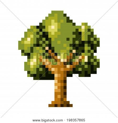 color pixelated tree with ramifications and leaves vector illustration