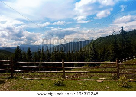 The summer scenery of the Carpathian Mountains overgrown with dense forest
