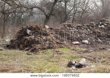 Large landfill among trees. Garbage is scattered in disorder.