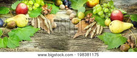 Seasonal fruit, autumn fruit - autumn harvest is healthy food (healthy eating)