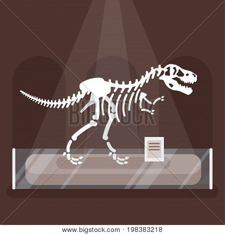 Vector flat style illustration of dinosaur skeleton in museum. Prehistoric predator - Tyrannosaurus Rex.