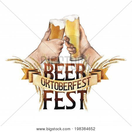 Beer fest. Two watercolor hands clinking with high glasses of beer over the phrase in vintage style decorated with malt. Hand painted oktoberfest design isolated on white background