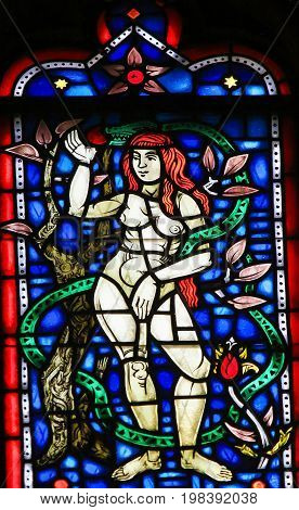 Stained Glass In Worms - Eve And The Snake