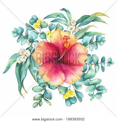 Green floral round wreath with a branches of silver-dollar eucalyptus and peach-pink Hibiscus flower, isolated on white background. Watercolor hand drawn painting illustration.