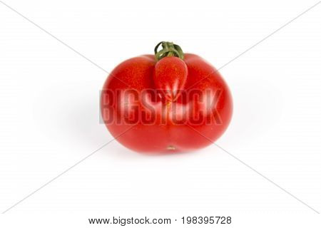 Deformed aberrant abnormal anomalous red tomato on a white background. Deformation due to cold weather during ovulation. Strange forms grown mutated tomato.