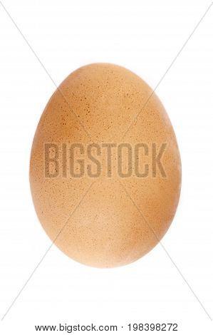Organic egg isolated on white bright background