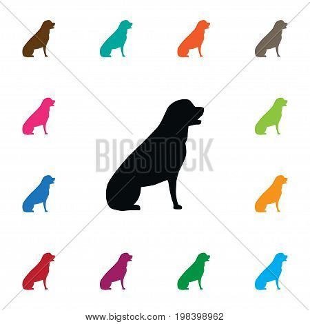 Pooch Vector Element Can Be Used For Husky, Eskimo, Dog Design Concept.  Isolated Husky Icon.