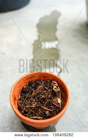 dry ton pot recieved water whit concrete floor background