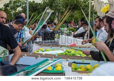 JERUSALEM, ISRAEL - OCTOBER 8, 2014: Sukkot in Israel. Jews buy four ritual plants. Israel. A traditional holiday market in Jerusalem