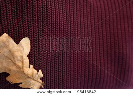 Close-up of woolen cloth with autumn leaves