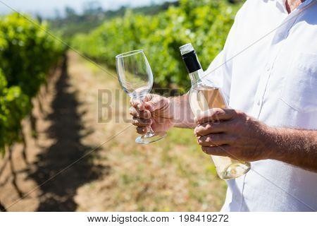 Mid section of vintner examining wine in vineyard
