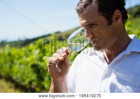 Vintner holding glass of wine in vineyard