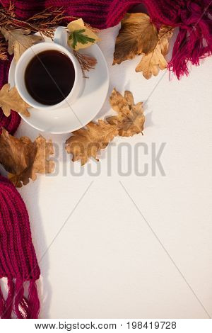 Overhead of black tea with autumn leaves and woolen cloth on white background