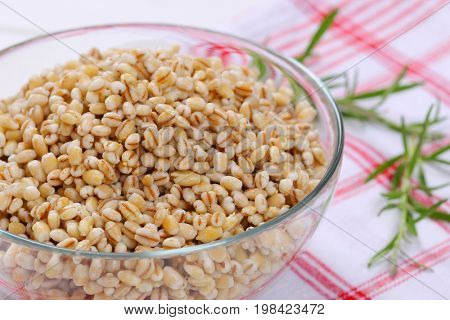 bowl of cooked pearl barley on checkered dishtowel - close up