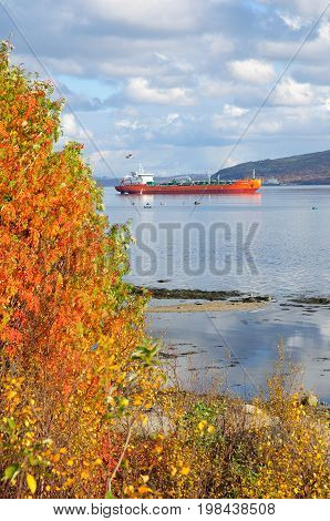 The ships are on the Kola Bay in Murmansk city