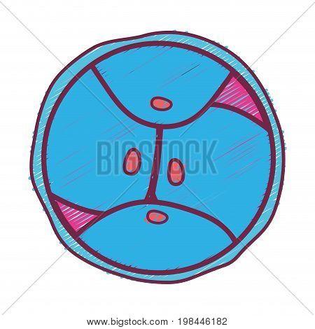 biology genetic embryo cells division vector illustration