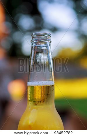 Nature Full Open Bottle Of Beer