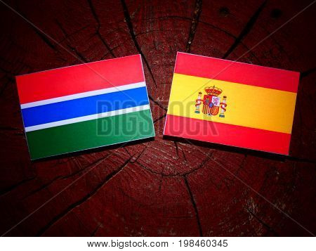 Gambian Flag With Spanish Flag On A Tree Stump Isolated