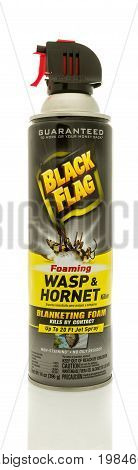 Winneconne WI - 5 August 2017: A bottle Black Flag hornet and wasp killer on an isolated background.