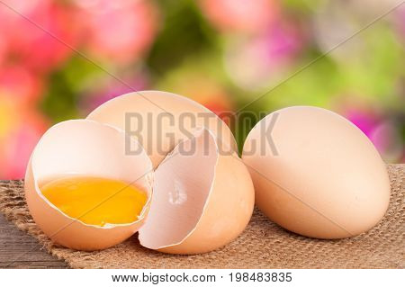 Broken egg with yolk and eggshell On a wooden table with a blurry garden background.